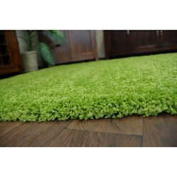Carpet SHAGGY GUSTO 9000 green
